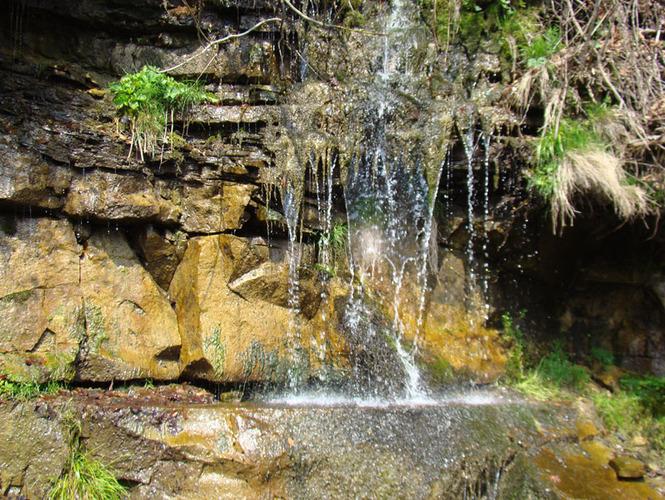 602c9b740648 Літній відпочинок в Карпатах - це свіже повітря, цілющі гірські джерела,  безкрайні карпатські ліси, галасливі водопади, екскурсії в гори, все це  створює ...