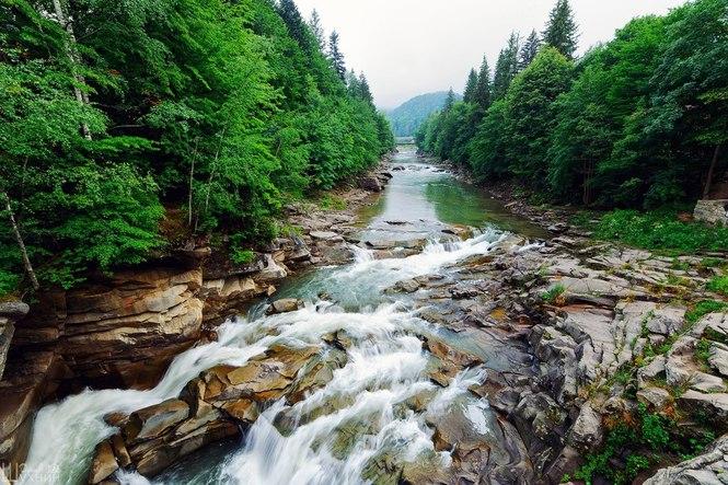"Результат пошуку зображень за запитом ""карпати річки"""